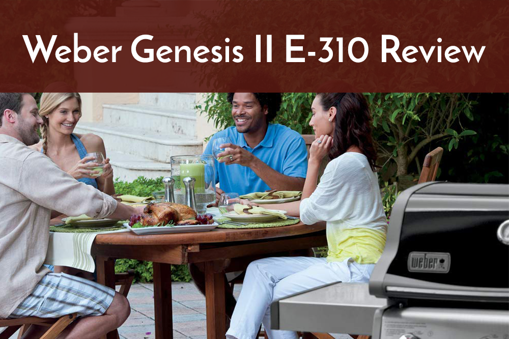 weber genesis ii e-310 review